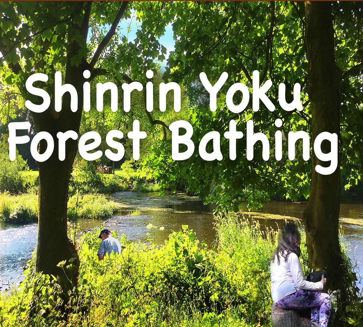 Kaia's Shinrin-Yoku forest bathing